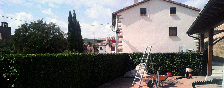 Remodelaci n de jard n a bajo mantenimiento en leache tu for Remodelacion de jardines