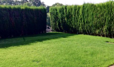 Jardín en Zuasti
