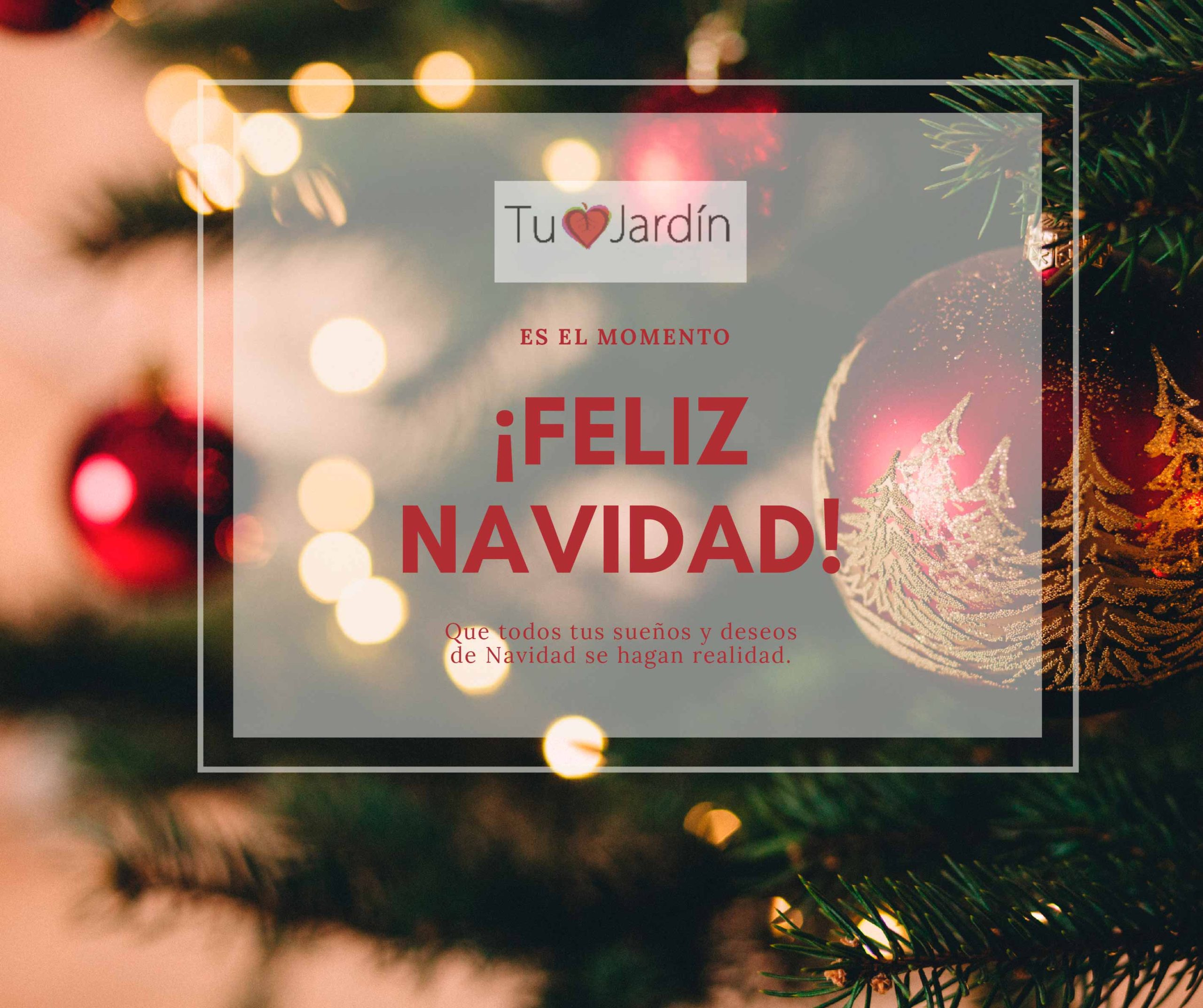 Feliz Navidad-Eguberri On!